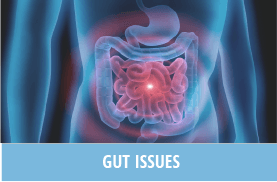 Gut Issues - Naturopathy